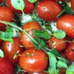 Sascheur-Banner-Landscape-Tomato-Soup
