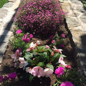 The gardens at the Veljusa Monastery were simple and pretty. The whole place was serene and the simplicity really made it special - read why.
