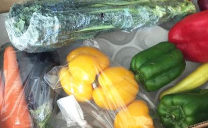 seasonal-veggies-prahran-market