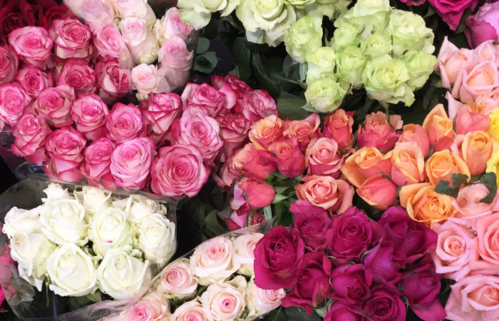 Roses at the Prahran Market, Melbourne.